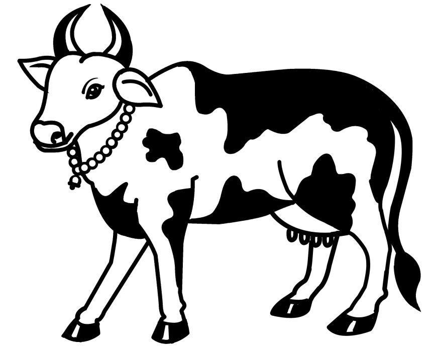 Line Drawing Cow : Line art balaj arts kanchipuram